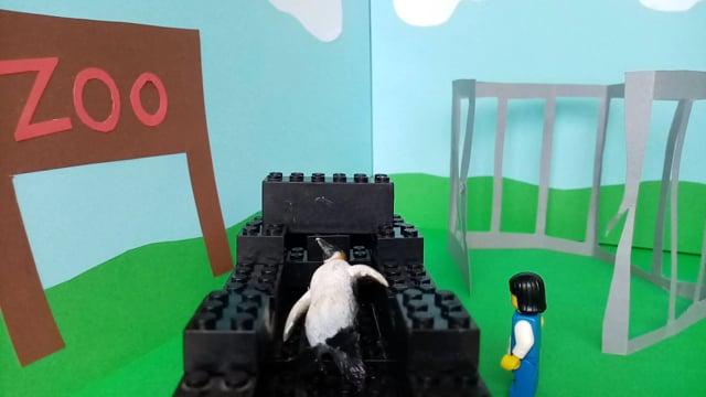 Pingo i zoo