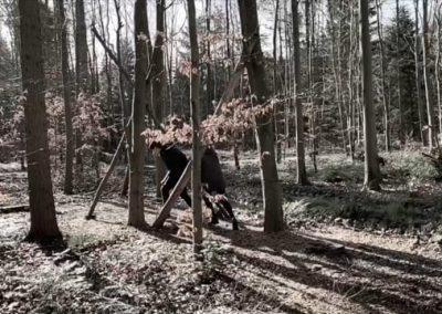 Skoven i egne hænder.
